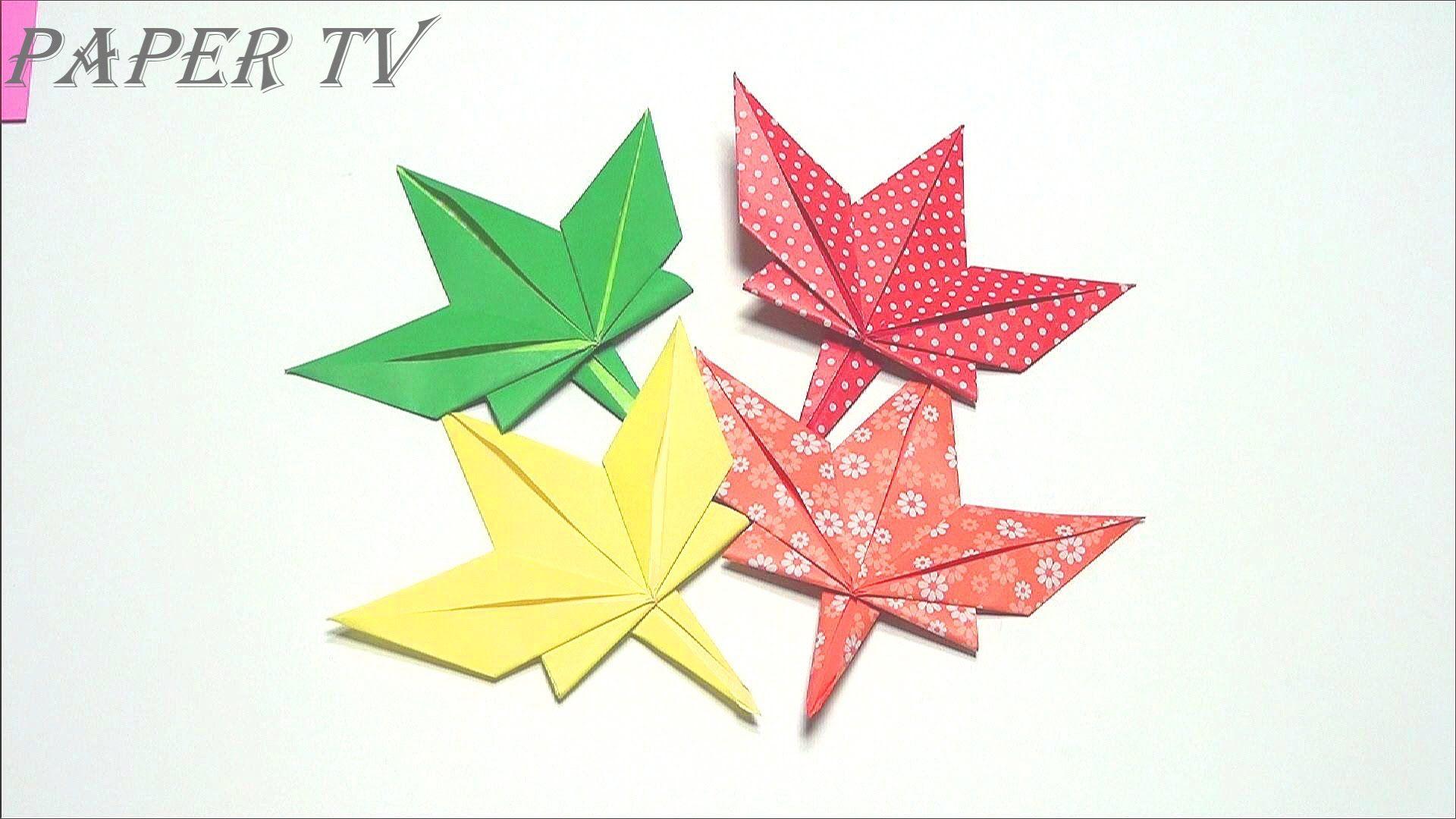 [Paper TV] Origami Maple Leaf 단풍잎 종이접기 折り紙 カエデの葉 como ... - photo#14