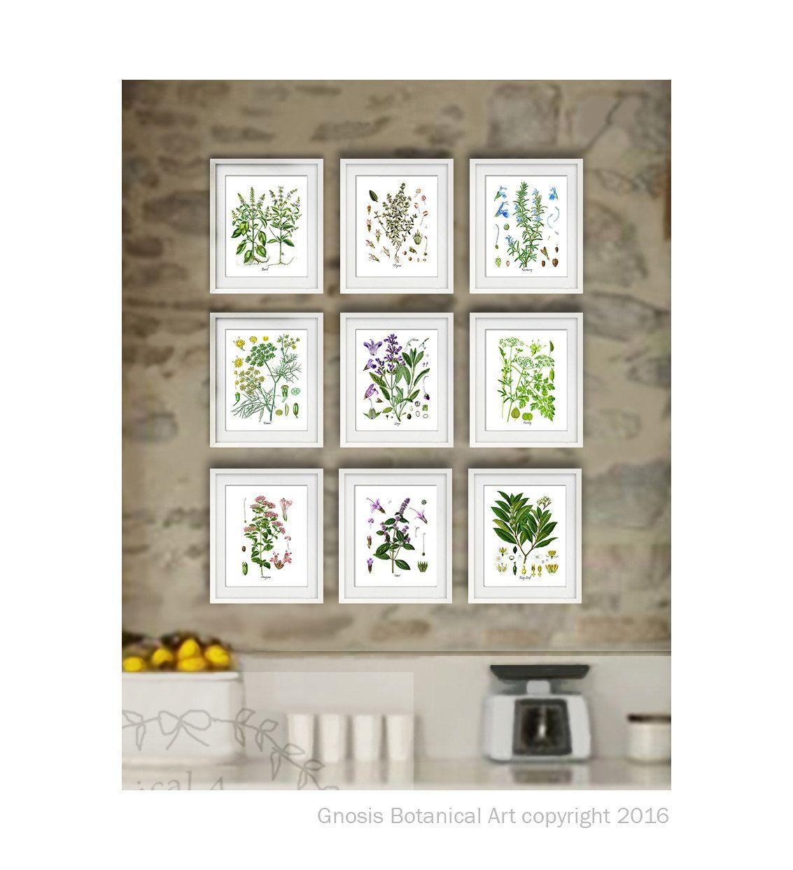 Herb prints set of herb botanical prints wall art gift for her