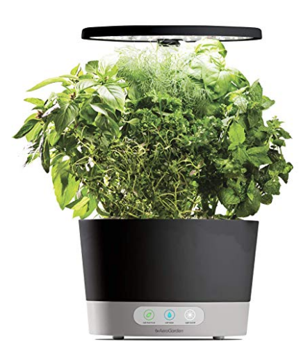 Develop New Herbs And Veggies Lasting Through The Year 400 x 300