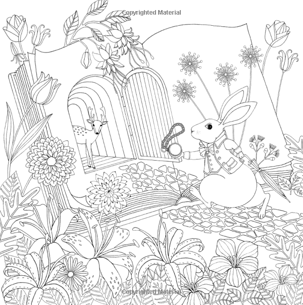 Wonderland A Coloring Book Inspired By Alice S Adventures Amily Shen 9780399578465 Amazon Com Books Coloring Books Coloring Pages Colouring Pages