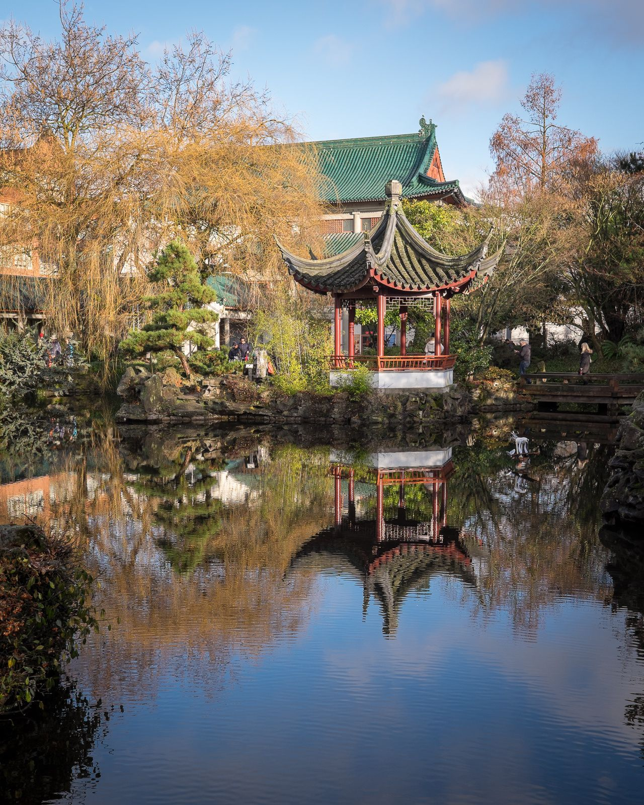 View from Dr Sun Yat Sen Classical Chinese Garden, Vancouver ...