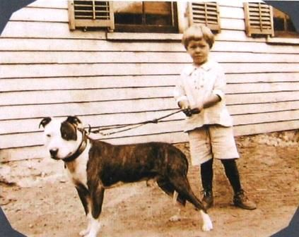 Pin On Historical Pet Dogs