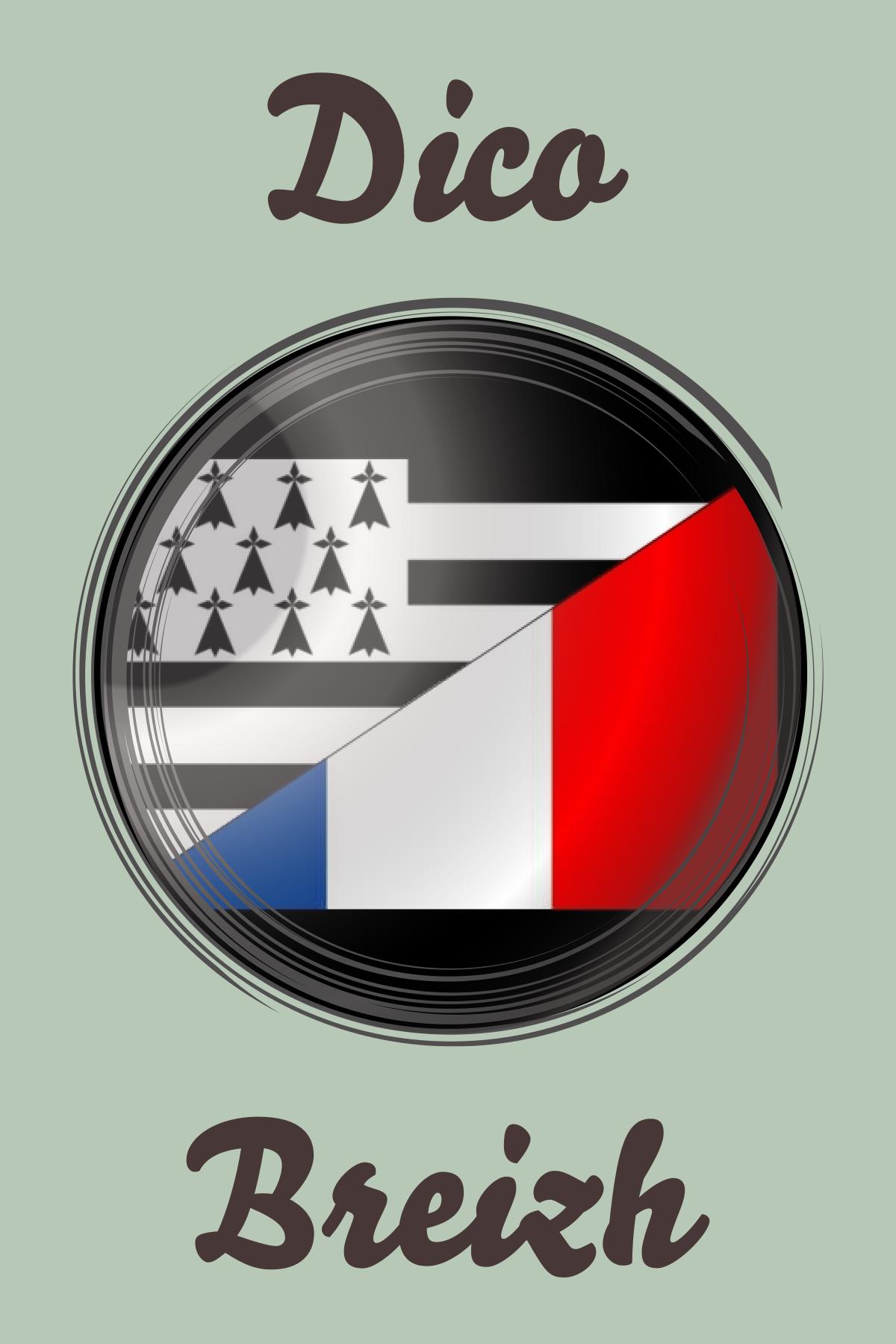 Dico Breizh En 2020 Breizh Bretagne Breton