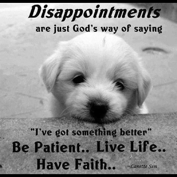 "Disappointments are just God's way of saying : "" I've got something better"".. Be Patient.. Live Life.. Have Faith.."