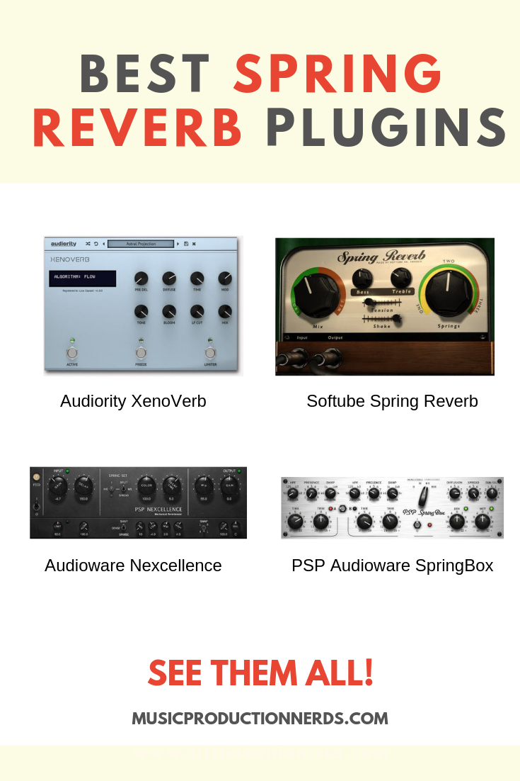 Check out our guide to the best spring reverb plugins