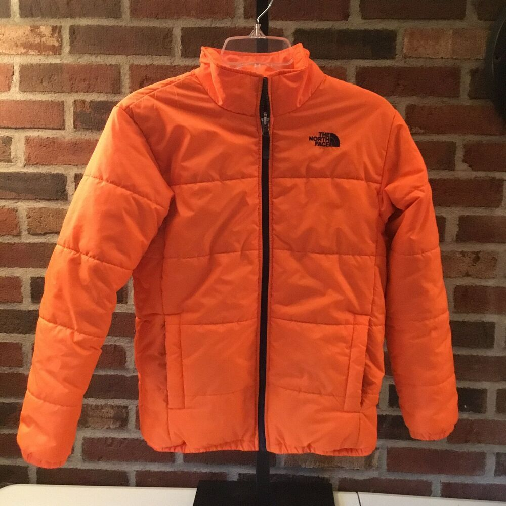 The North Face Puffer Jacket Coat Size L 14 16 Youth Boys Thenorthface Pufferjacket North Face Puffer Jacket The North Face Puffer Jacket North Face Puffer [ 1000 x 1000 Pixel ]