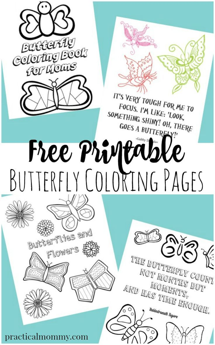 Butterfly Coloring Pages For Adults | Adult Coloring Fun | Pinterest ...