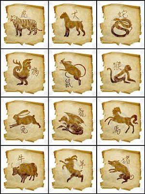 15 Ideas De Chinese Zodiac Signos Del Zodiaco Chino Zodiaco Chino Horoscopo Chino