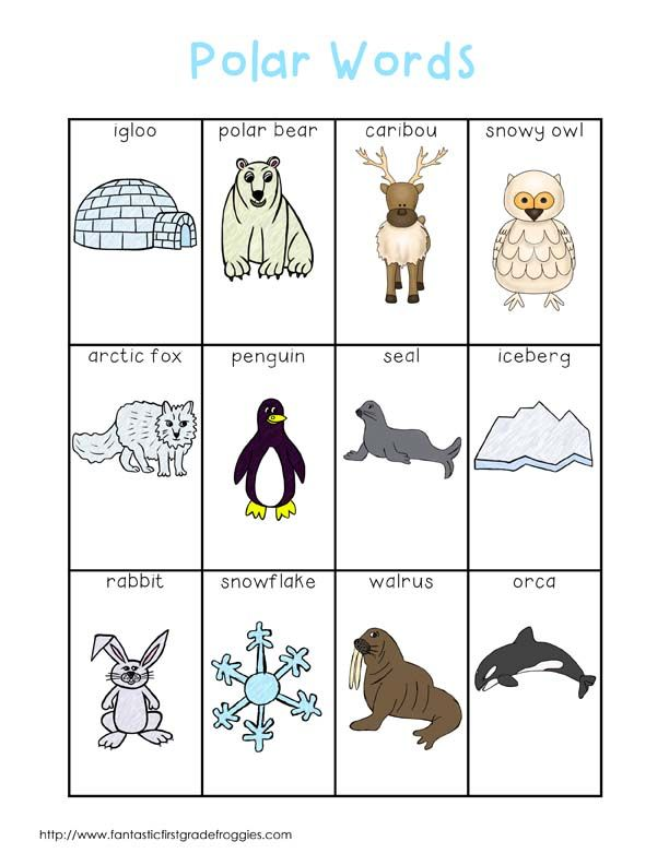 Writing Center Tools- polar words