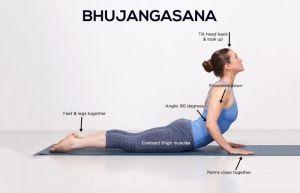 pinfinessyoga on bhujangasana  cobra pose yoga