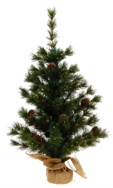 Mini Weihnachtsbaum Kleiner Bonsai Christbaum Mit Zapfen K Uu Wohnen Und Garten Christbaum Weihnachtsbaum