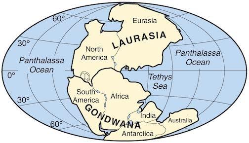 Risultati immagini per pangea laurasia gondwana
