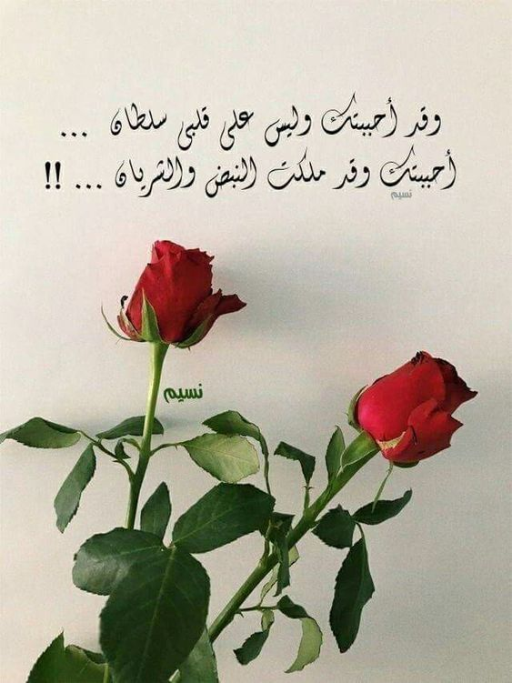 عبارات حب وغرام وعشق قصيرة رومانسية للحبيب فوتوجرافر Quotes For Book Lovers Morning Love Quotes Beautiful Arabic Words