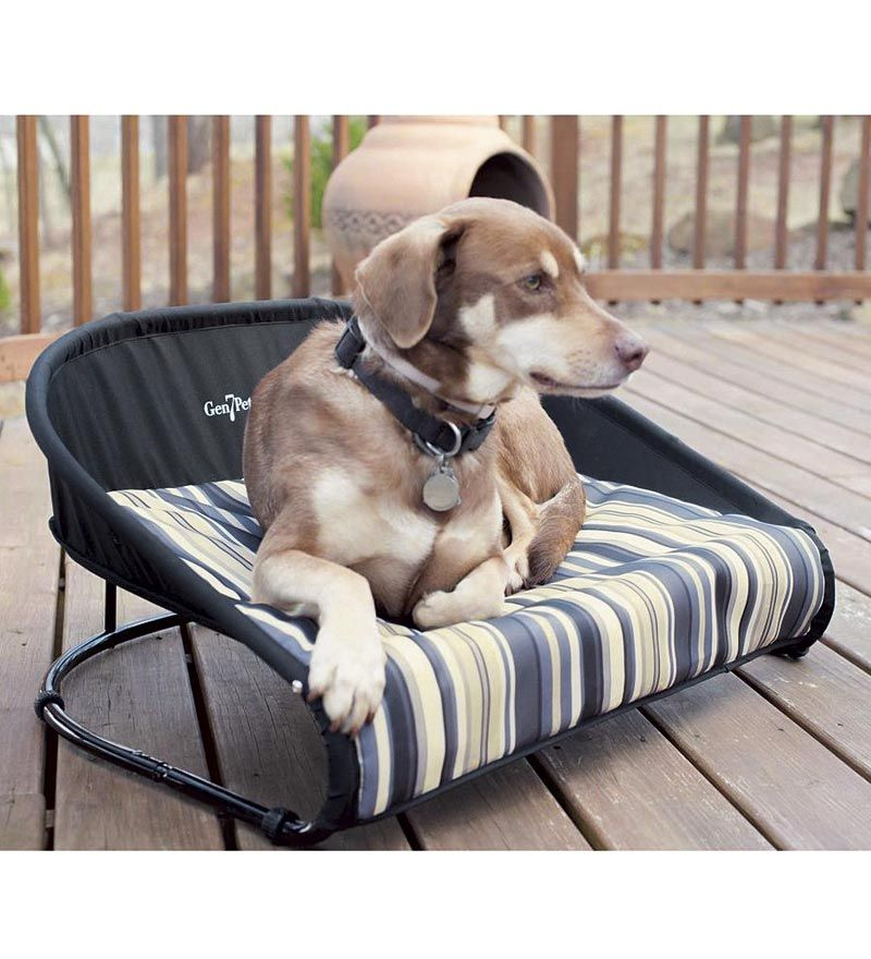 Large Raised Pet Bed 36 26quot L X 24 26quot W X 8 26quot H Dog Beds For Small Dogs Outdoor Dog Bed Raised Pet Bed