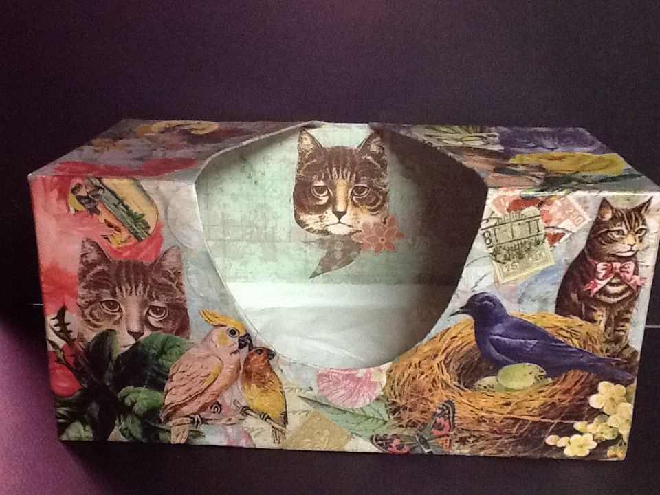 Tissue box #1 ~ ©NSoppelsa ~ #collage #art #cat #decoupage #ephemera #decor