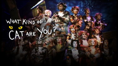 Cats Preview and Cast of Cats Great Performances PBS