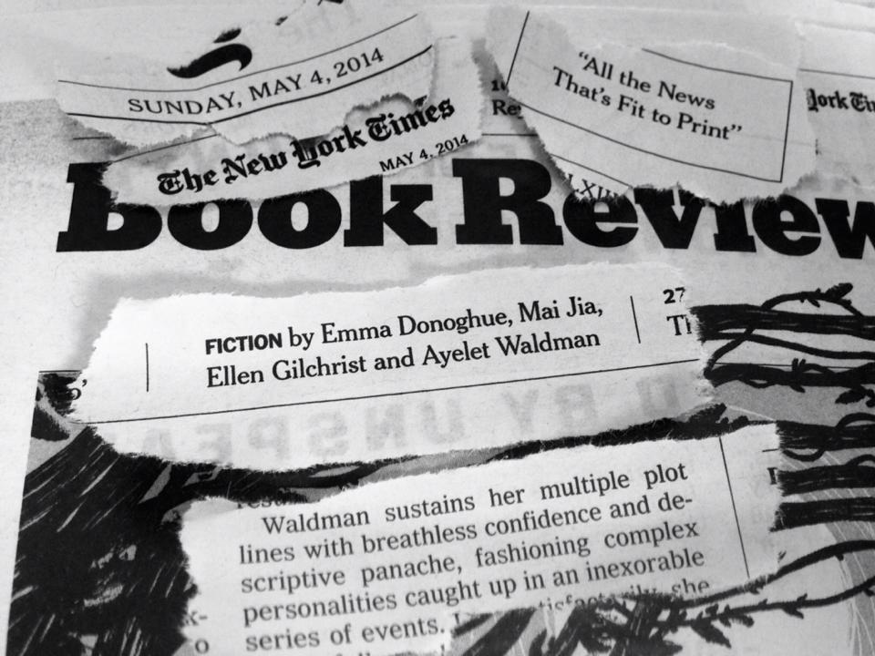 NYT on Ayelet Waldman Books, Fiction