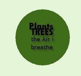 Bomen en planten de zuurstof die wij nodig hebben
