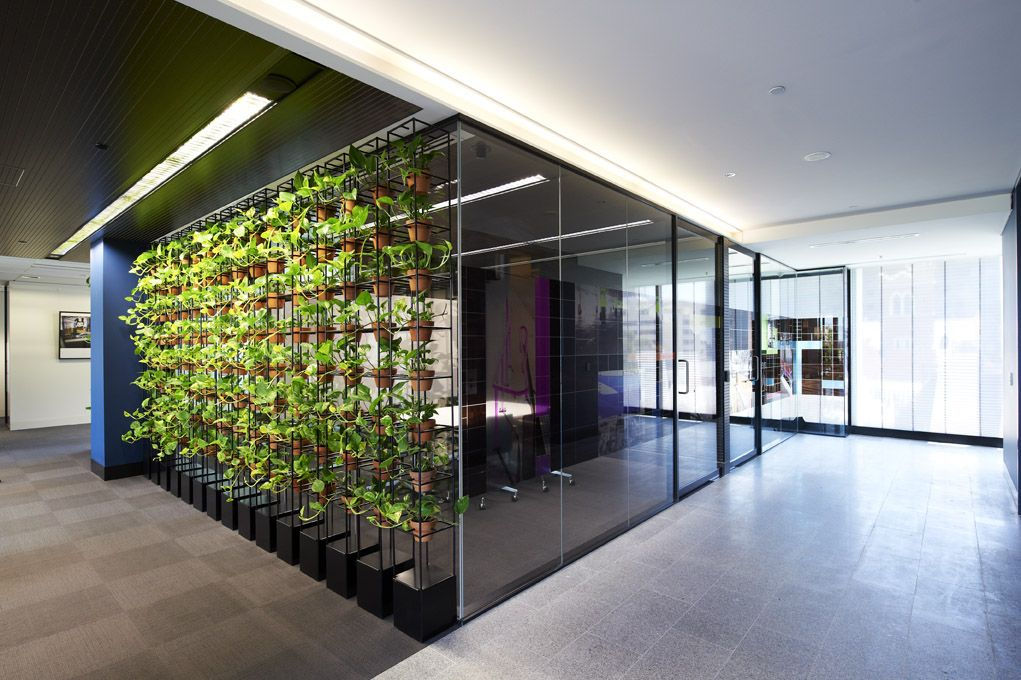 Plant Feature Meeting Room With Images Meeting Room Design