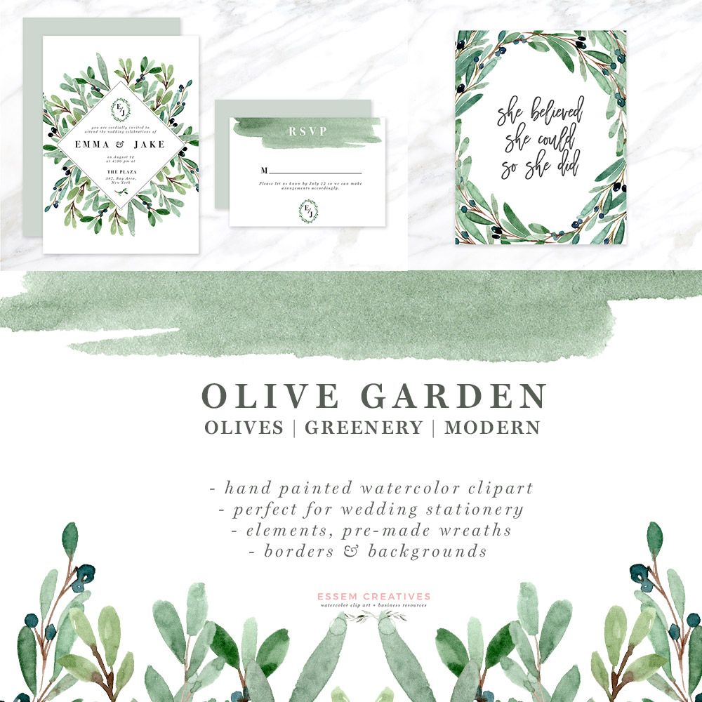 Olive Garden Watercolor Olive Branch Clipart Set Featuring Olive Leaves Branches And Wreaths Digital Papers And Le Clip Art Watercolor Flowers Leaf Clipart