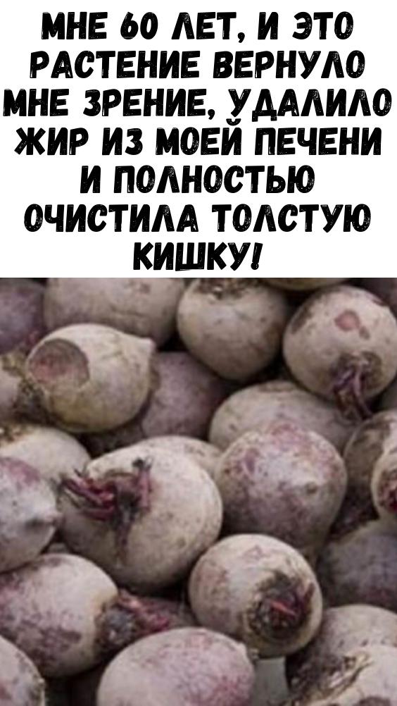 Рубрика: Tratarea lipitoriilor varicoase în Lugansk