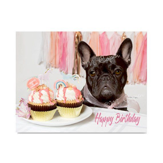 Happy Birthday French Bulldog Cards Set Of 4 Cards Brindle