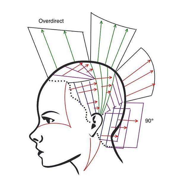Techique 8 Sassoon Diagram Hairbrained Hairnerd Hairtechapp