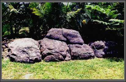 Fake Rock Garden