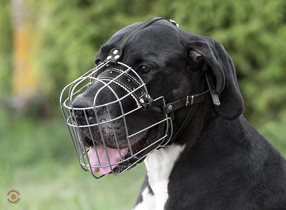 Wire Basket Dog Muzzle Great Dane Metal With Adjustable Leather Straps