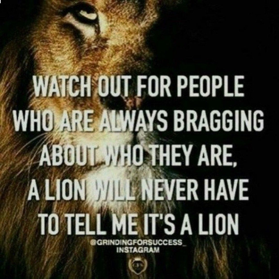 Watch out for people who are always bragging about who they are. A lion will never have to tell me it's a lion.