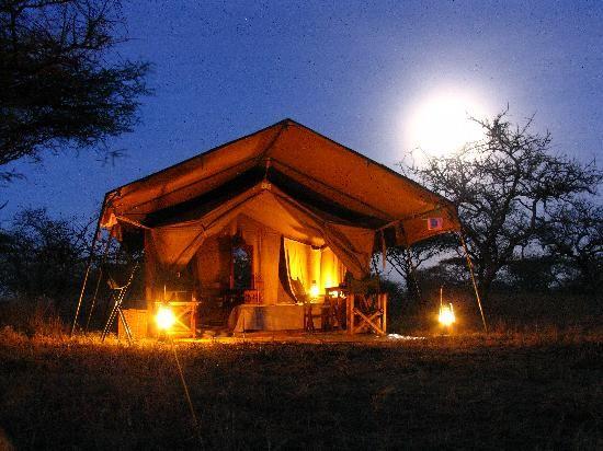 Serengeti National Park | Mapito Tented Camp Serengeti (Serengeti National Park, Tanzania ...