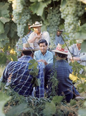 Cesar Chavez stood up for people like my grandfather who worked in the fields of Oregon