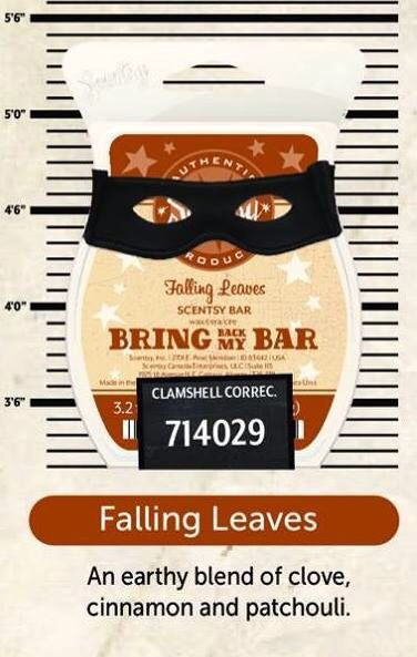 Falling Leaves this is a great one!  www.meganherko.scentsy.us