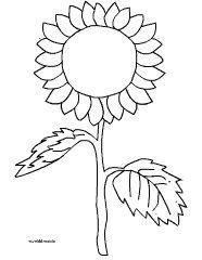 sonnenblume einfach malvorlage | sonnenblume basteln
