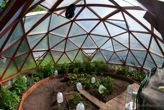 Our geodesic dome greenhouse 39 s new home c pulas geod sicas pinterest invernadero - Casas de madera y mas com ...