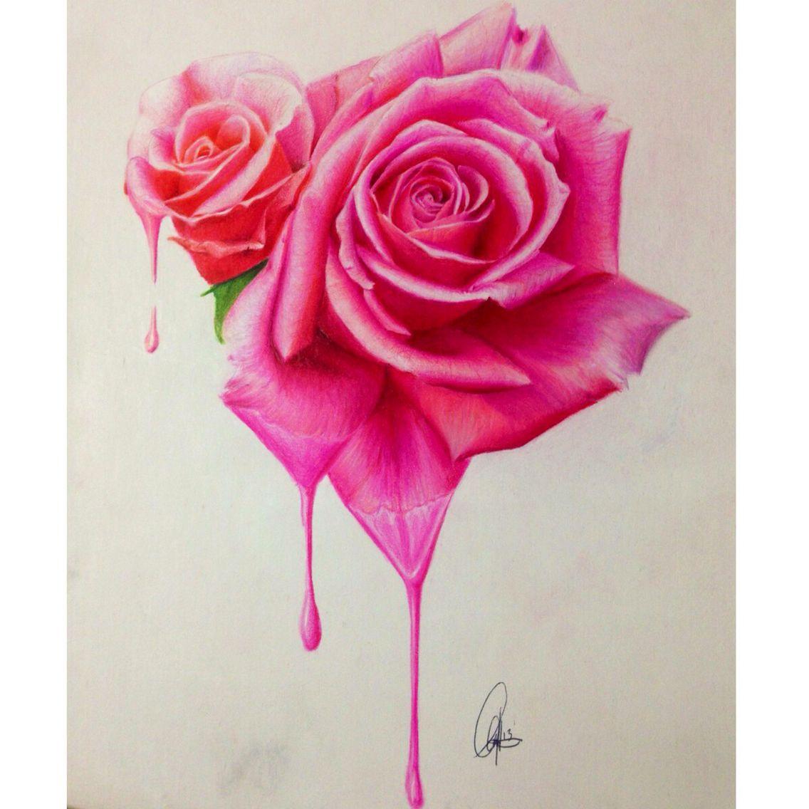 Colored Pencil Rose | Colored Pencil | Pinterest | Colored pencils ...