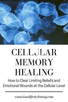 Dr. Alexander Lloyd offers a number of powerful techniques for cellular memory healing, which allow...