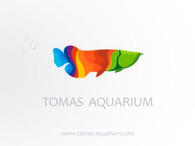Tomas Aquarium | Design | Aquarium design, Aquarium, Design