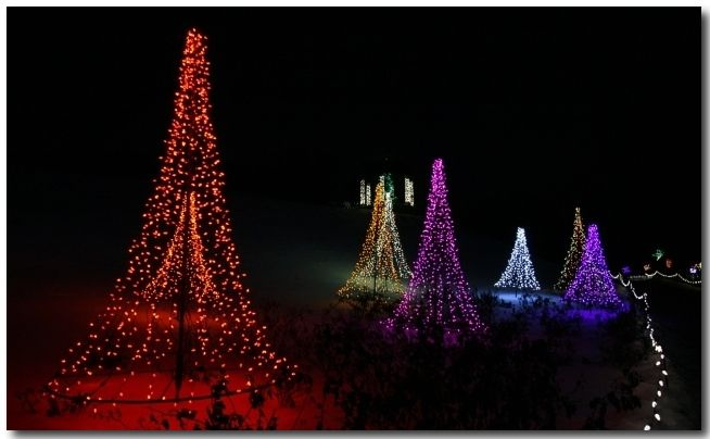 Green Bay Garden Of Lights Delectable Green Bay Botanical Gardens Festival Of Lights Winter Christmas Inspiration