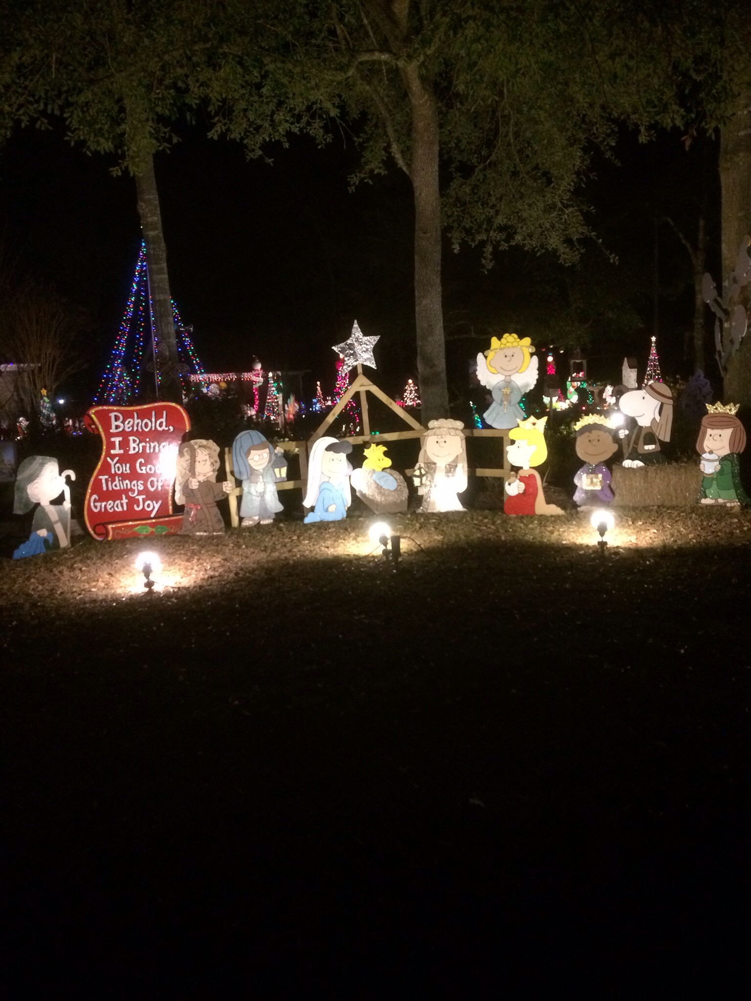 My Charlie Brown Peanuts Christmas Nativity yard art