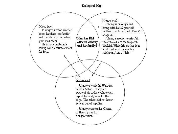 Ecological Model And Systems Theory Systems Theory Ecology Ecological Systems Theory