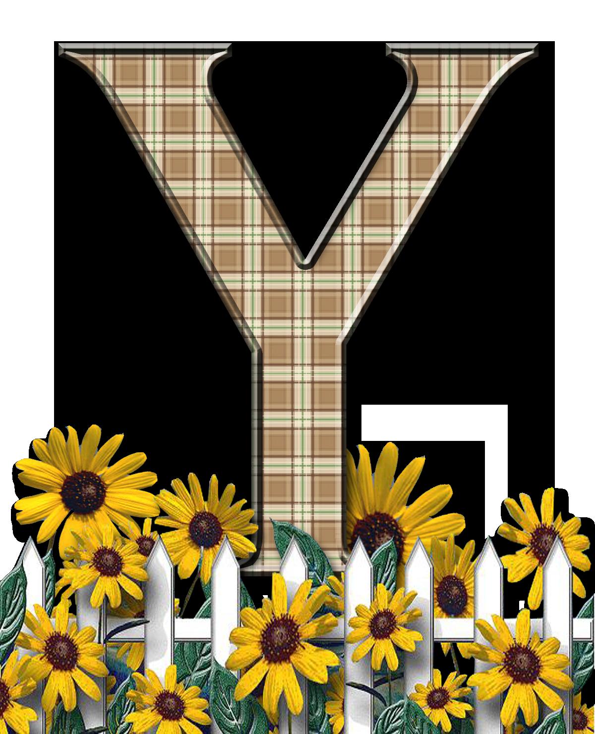 Letra con verja floral.....Y