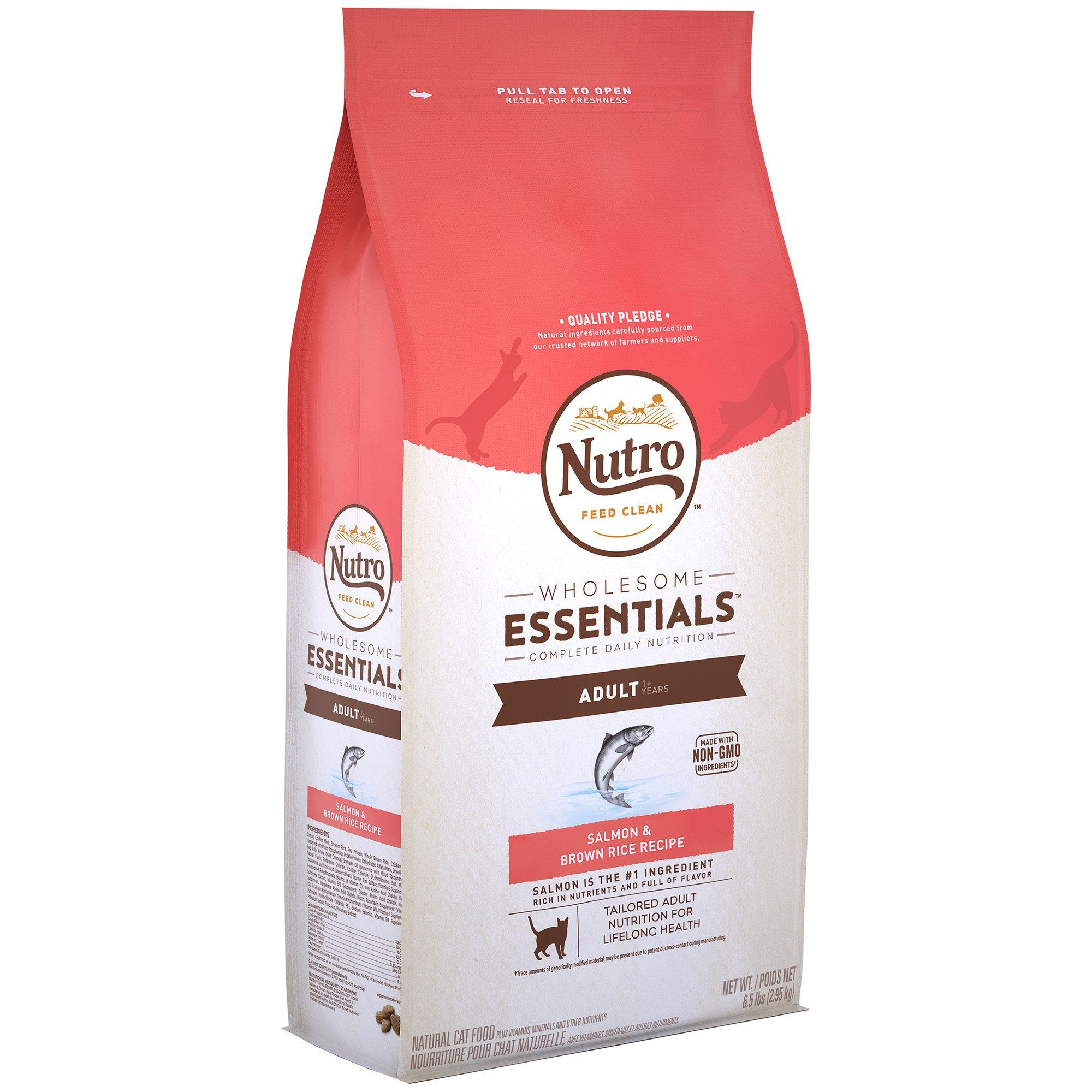 Nutro Wholesome Essentials Salmon Brown Rice Recipe Dry Adult