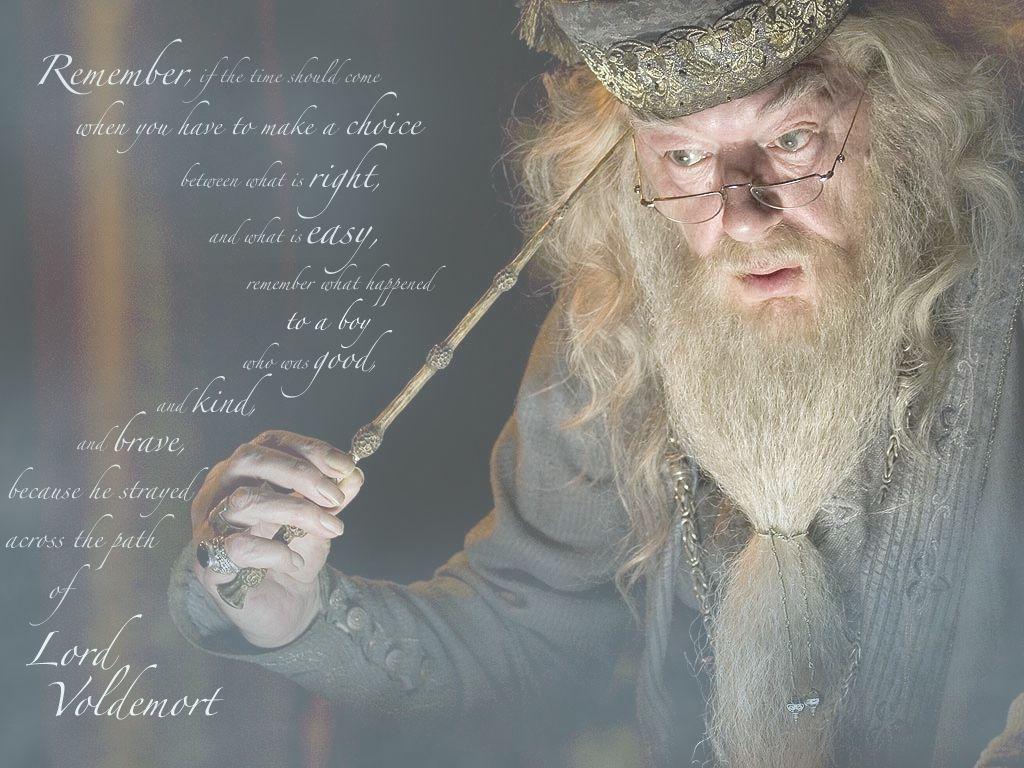 Harry Potter Wallpaper Dumbledore Dumbledore Harry Potter Harry Potter Hermione