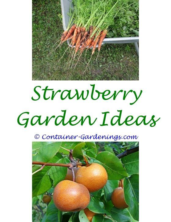 moroccan garden design ideas - front garden ideas with sleepers ...