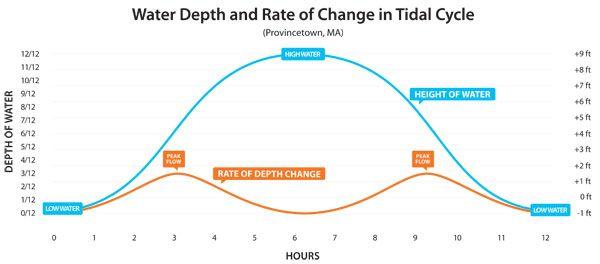 water tides chart - Heartimpulsar