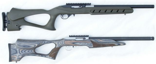 Pin On Ruger 10 22 Custom