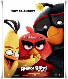 Download The Angry Birds Movie 2016 Hindi Audio Angry Birds Full Movie Angry Birds Movie Angry Birds