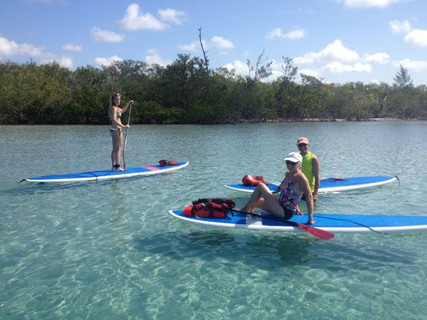 Learn how to Paddle Board at the Stump Pass Beach State ...