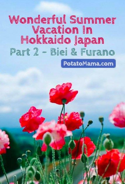 Wonderful Summer Vacation In Hokkaido Japan Part 2 Biei